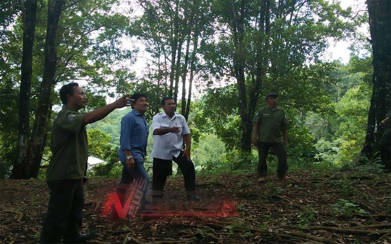 Dirjen Perkebunan Kementerian Pertanian RI Tinjau Pertanian Cengkeh Di Ternate