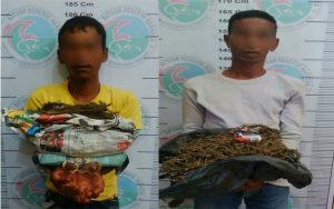 Simpan Daun Ganja, Dua Warga Aceh Tamiang Diamankan Polisi