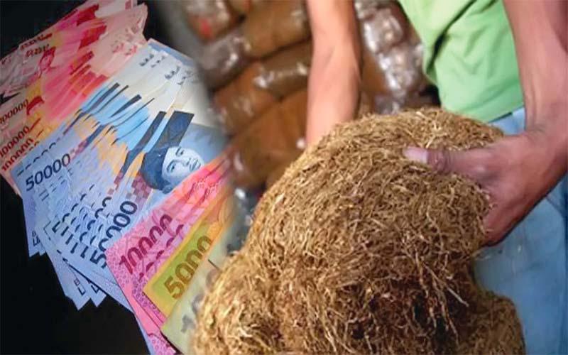 Wow Fantastis, Anggaran DBHCHT Kabupaten Sampang Capai Rp 21 Miliar