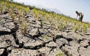 Ilustrasi Musim Kemarau, 42 Desa Di Sampang Mulai Dilanda Kekeringan