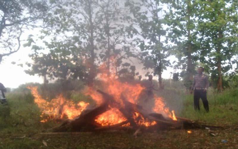 Dijadikan Tempat Pesta Narkoba, Polres Bangkalan Bakar Enam Gubuk