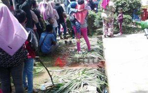 Gara-gara Acara Bank Jatim, Tanaman Bunga Di Taman Arek Lancor Banyak Rusak