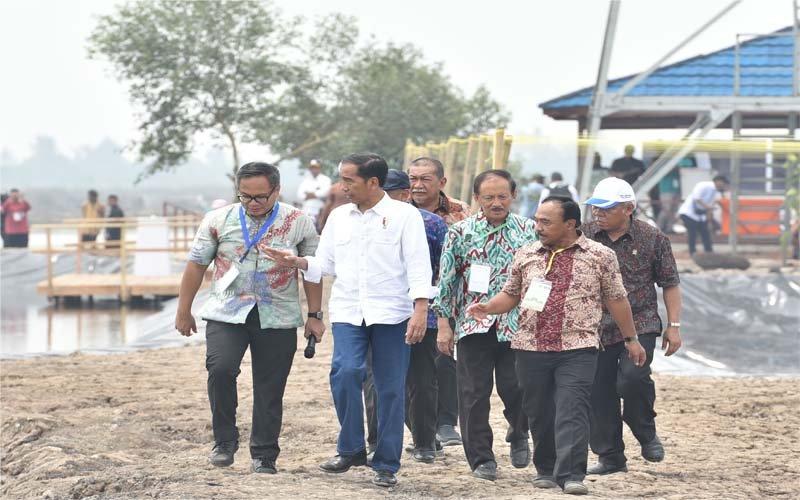 Presiden Jokowi Tinjau Program Perhutanan Sosial Di Probolinggo