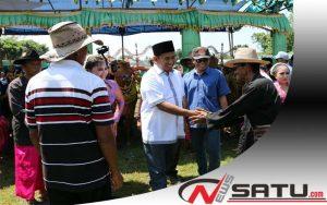 Wabup Sumenep; Lenggak-Lenggok Sapi Sonok