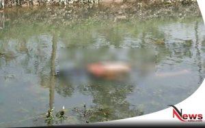 Warga Jombang Digegerkan Dengan Mayat Mengambang Di Sungai Trawasan