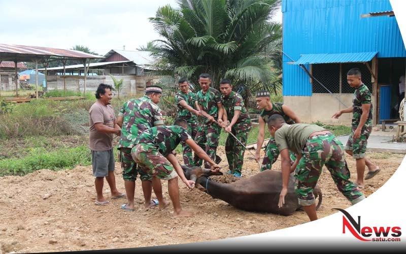 53 Hewan Qurban Tandai Perayaan Idul Adha di Boven Digoel Papua