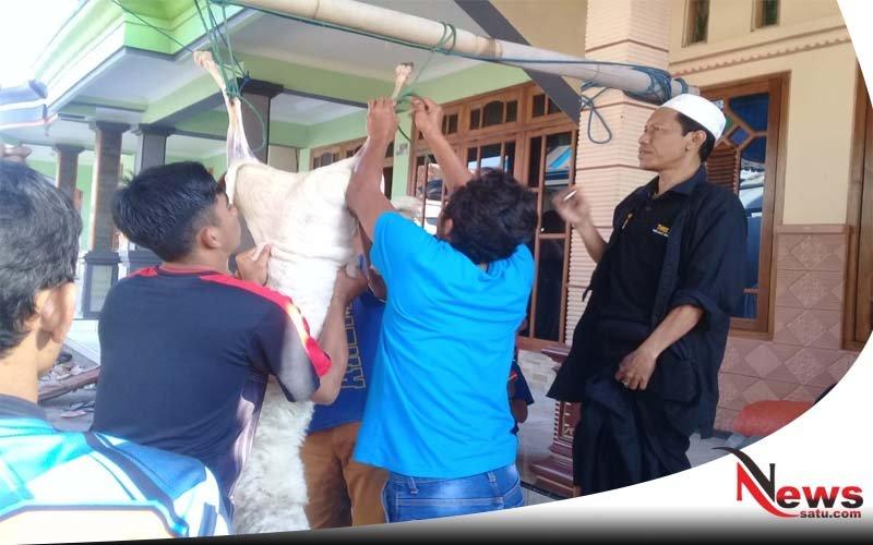 Biro News Satu Probolinggo Bagi-bagi Daging Kurban Pada Warga