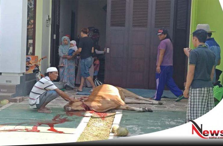 PT MEI Salurkan 7 Ekor Hewan Kurban Pada Warga Sumenep