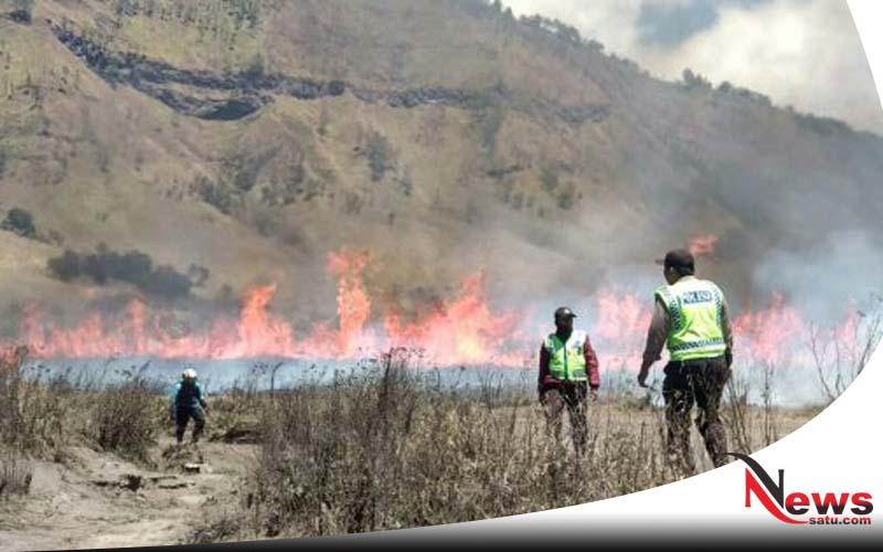 Hutan Di Gunung Bromo Probolinggo Terbakar