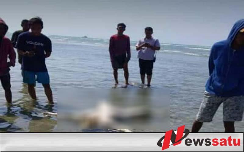 4 Jenazah Nelayan Asal Probolinggo Kembali Ditemukan Di Perairan Pamekasan