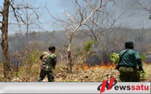 Kebakaran, TNI Bersama Warga Berusaha Padamkan Api Di HutanLindung Gunung Bentar