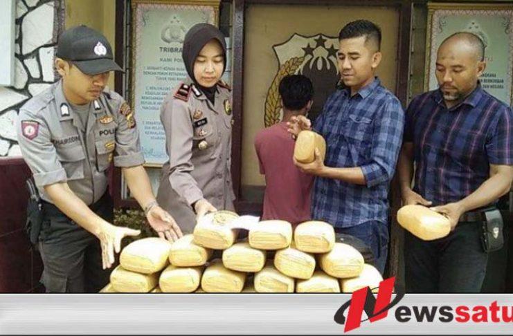 Kurir Ganja 24 Kg Dibekuk Polisi Bireuen Aceh