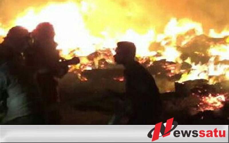 Gudang Pabrik Pengelohan Kayu Di Probolinggo Terbakar