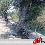 Proyek Jalan Jalur Bromo Dikeluhkan Warga