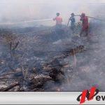 Kerahkan 300 Personil Padamkan Api dekat Areal PT DGS
