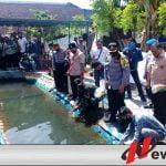 Walikota dan Kapolresta Probolinggo Sebar Benih Ikan Nila Di Kampung Tangguh