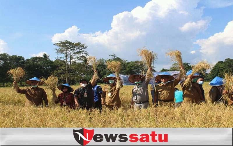 Pemkab OKI Pertahankan Predikat Lumbung Pangan Nasional