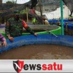Babinsa Kodim 0826 Pamekasan Kuatkan Ekonomi Desa Melalui Budidaya Lele