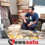 Viral Di Medsos, Satpol PP Kota Probolinggo Di Duga Pecahkan Telur Pedagang
