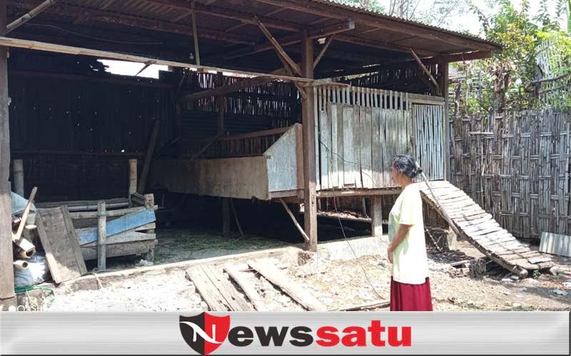 Belasan Ekor Kambing Warga Pilang Kota Probolinggo Dicuri