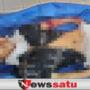 Mayat Laki-laki Ditemukan Tak Bernyawa Di Jalintim Kayuagung